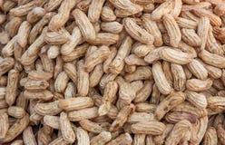 Kokta jordnötter på marken Arkivbild