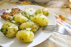 Kokta potatisar med persilja på en platta royaltyfria bilder