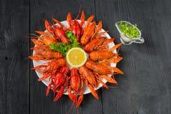 Kokta röda kräftor på en vit maträtt, bästa sikt Royaltyfria Bilder