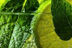 Koktajl z wapna i miętówki liśćmi Fotografia Royalty Free