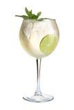 koktajlu alkoholiczny lód Silny alkoholiczny napój na białym tle Zdjęcie Stock