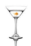 koktajlu dopłynięcie rybi złoty Zdjęcia Royalty Free