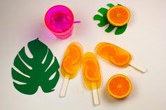 koktajlu i pomarańcze lody Obrazy Stock