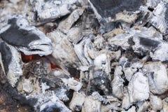 Kol och bränt trä royaltyfri foto