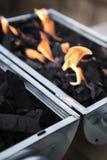 Kol och flammor royaltyfri fotografi