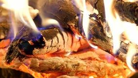 Kol- och vedträbränning Brinnande trän huttrar i varm luft och stillar att fluorescera för flammor lager videofilmer