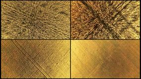 Kolaż anteny wierzchołka puszka widok złota banatka delikatnie Kolaż 4 materiał filmowy złota banatka strzela z dron zdjęcie wideo