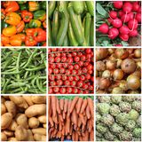 Świeżych warzyw kolaż Zdjęcia Royalty Free