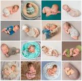 Kolaż nowonarodzone dziecko fotografie obraz stock