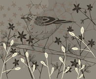 Kolaż różnorodne rośliny i ptak Fotografia Stock