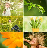 kolaż wiosna Obraz Royalty Free