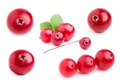 Kolażu cranberry zbliżenie. Obrazy Royalty Free