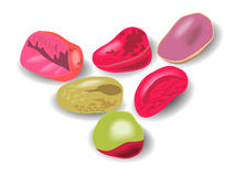 Kola beans Stock Image