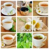 kolaż herbata Zdjęcie Stock
