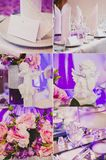 Kolaż kolekcja fiołek, purpurowy ślubu stół Fotografia Stock