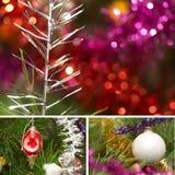 kolażu ornamentu iskrzasty drzewo Zdjęcie Royalty Free
