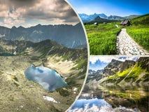 Kolaż Zakopane gór park narodowy w polonach Obraz Royalty Free