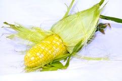 kolby kukurydzy Zdjęcie Royalty Free
