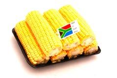 kolby kukurydzy południowej afryce Obraz Stock