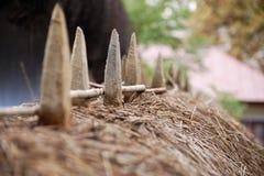 Kolca ogrodzenie Obrazy Royalty Free