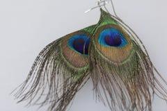 Kolczyki robić pawi piórka Kłamstwo na białej powierzchni na widok Fotografia Royalty Free