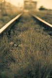 Kolej, linii kolejowej ostrość na poręczu Zdjęcie Royalty Free