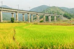 Kolejowy most Zdjęcie Stock