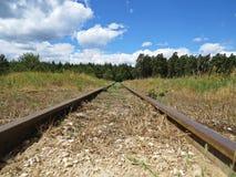 Kolejowa linia kolejowa transportu sposobu perspektywa z Forrest i Chmurny niebo w tle Obraz Royalty Free
