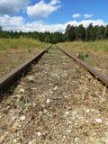 Kolejowa linia kolejowa transportu sposobu perspektywa z Forrest i Chmurny niebo w tle Zdjęcie Royalty Free