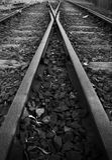 Kolejowi ślada i punkty, Australia Obrazy Stock