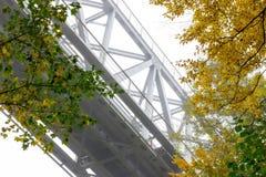 Kolejowy metalu most w jesień lesie Obrazy Royalty Free