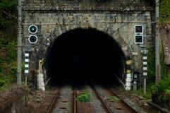 Kolejowy tunel Zdjęcia Royalty Free