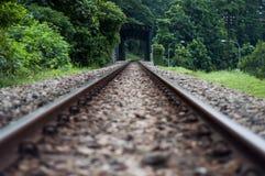 kolejowy zapamiętanie ślad zdjęcia royalty free