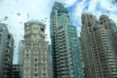 kolekci kropel natury deszczu okno Fotografia Royalty Free