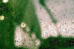 kolekci kropel natury deszczu okno Zdjęcie Stock