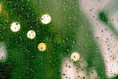 kolekci kropel natury deszczu okno Obraz Stock