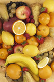 kolekci owoc obrazy stock