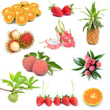 kolekci owoc Fotografia Royalty Free