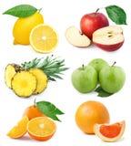 kolekci owoc Obraz Stock
