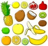kolekci tropikalny owocowy Obrazy Stock