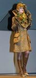 kolekci wzorcowy slava zaitsev Zdjęcie Stock