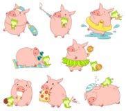 Kolekcja śliczne świnie Fotografia Royalty Free