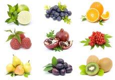 Kolekcja świeże owoc obrazy stock