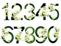Kolekcja dekoracyjne liczby Zdjęcia Royalty Free