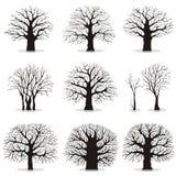 Kolekcja drzewo sylwetki Zdjęcie Stock