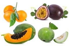 Kolekcja egzotyczne świeże owoc odizolowywać na bielu obrazy stock