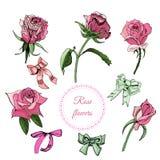 Kolekcja elementy kwitnąć kolor róży kwitnie, łęki i rama Ręka rysujący atramentu nakreślenie na białym tle ilustracji