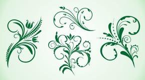 kolekcja fryzujący kwiatów ornament royalty ilustracja