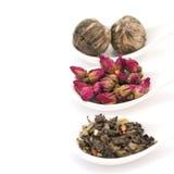 Kolekcja herbata Fotografia Royalty Free
