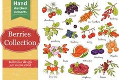 Kolekcja jagody: truskawka, rodzynek, agrest, czarna jagoda, wiśnia, brier, czernica ilustracja wektor